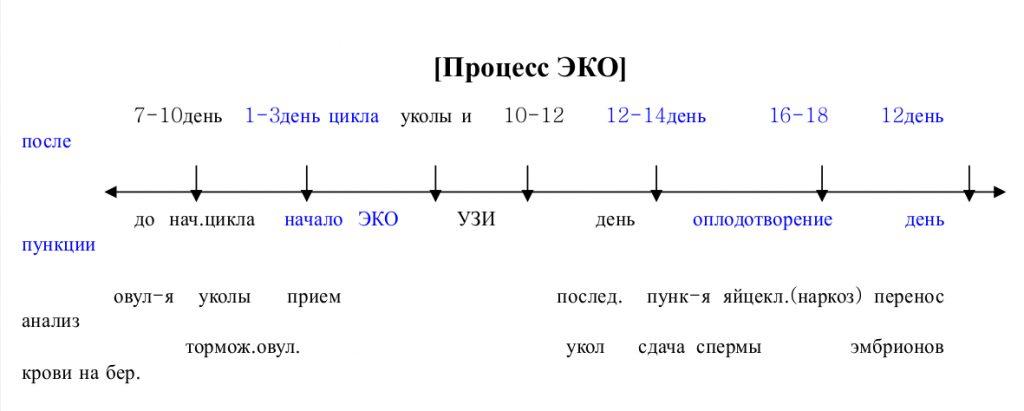 eko-porcess (2)