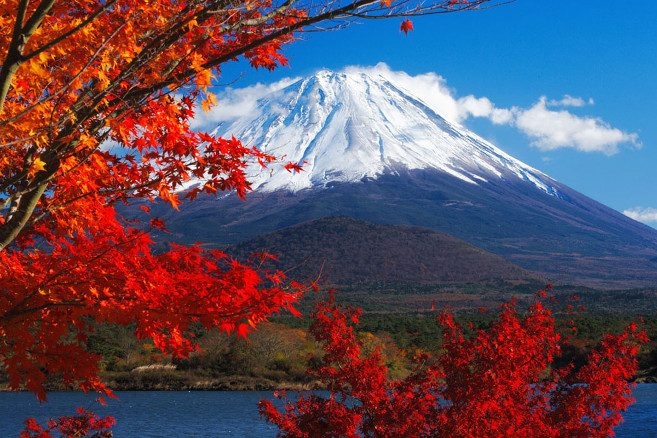 Осенние туры в Японию