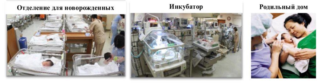 rody_v_koreiskoy_klinike (2)